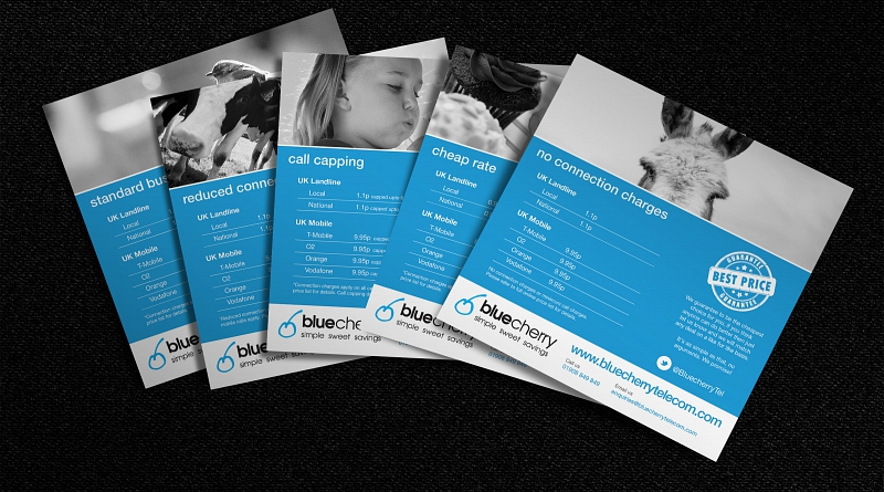 Blue Cherry Telecom - Design of 5 tariff cards to advertise different calling packages